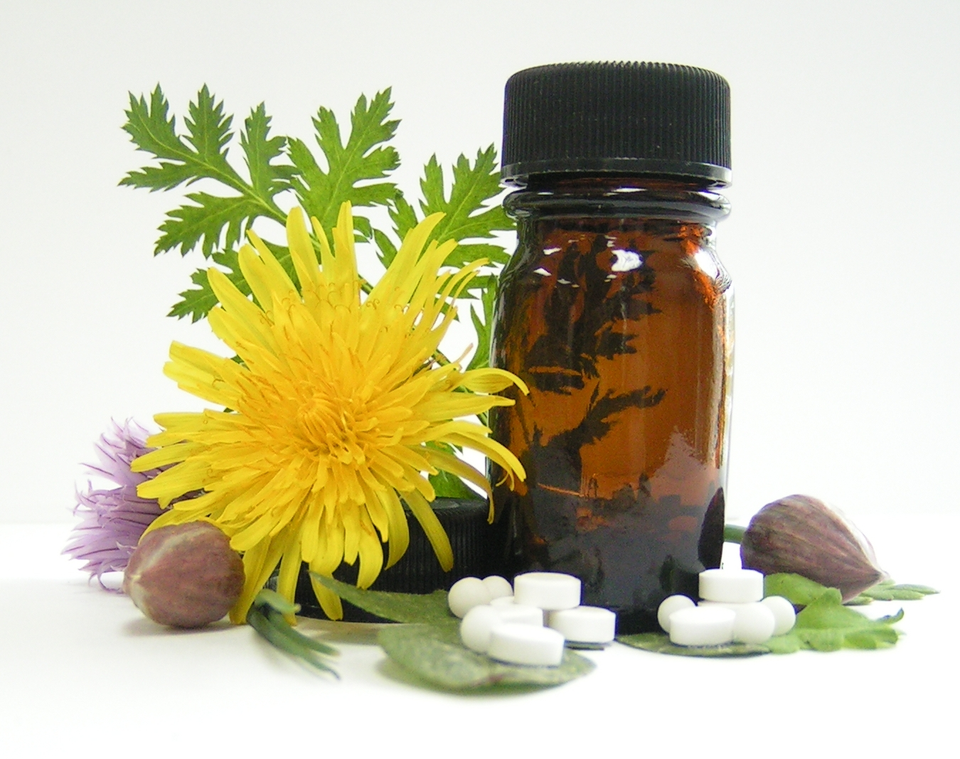 homeopathy-stockexhng