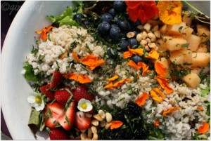Fruit__Grains_Salad_w_Strawberry_Vinaigrette_closeup